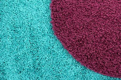 carpet cleaning services in kingston