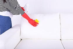 upholstery cleaning services in kingston